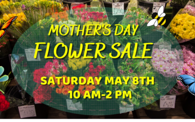 Mother's Day Flower Sale